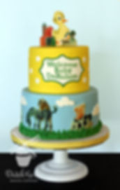 The Fuzzy Duckling Baby Shower cake