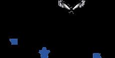 Logo Officiel CDE.png