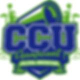 CCU editable RGB Big.jpg