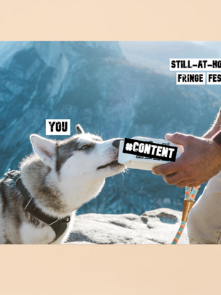 content dog.png