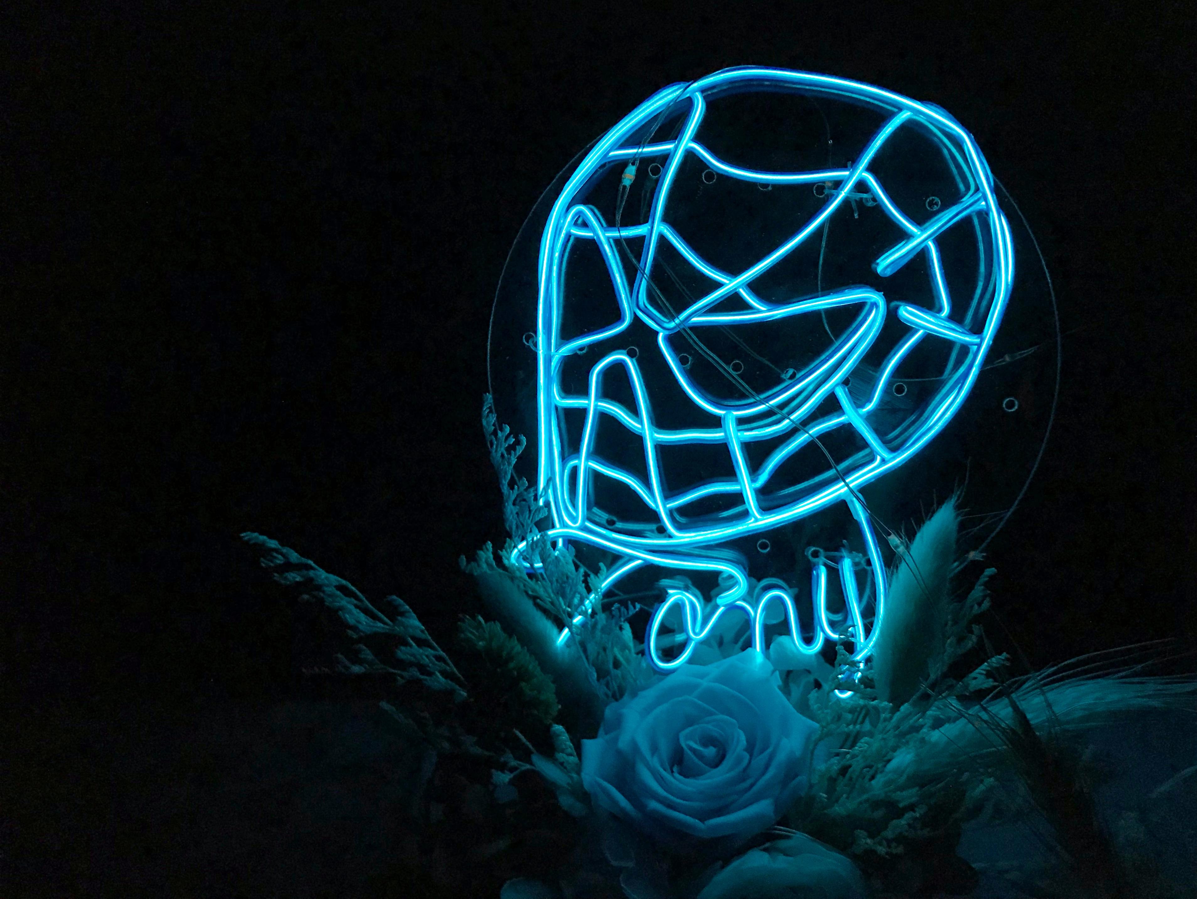 Neon on pot