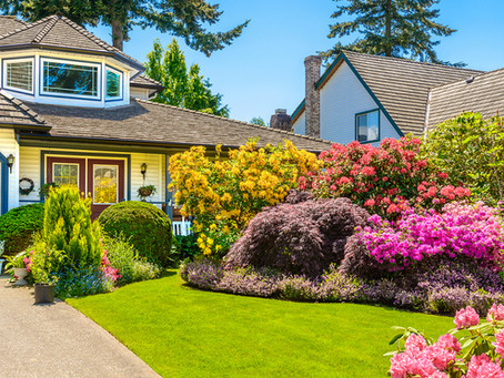 Improve Your Home's Curb Appeal in 5 Easy Steps