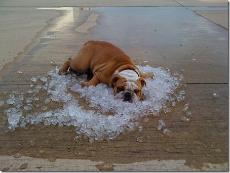 summer in North Texas, keep cooling costs down