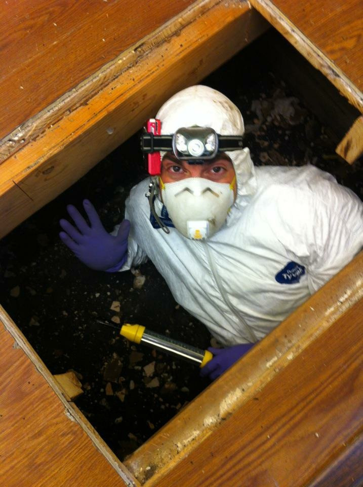 crawl space- dallas home inspector