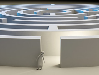 MetroTex Leadership Committee: Personal Goals & Accountability
