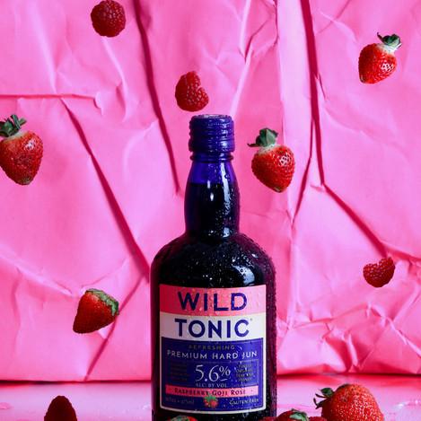 wild tonic jun kombucha alcoholic
