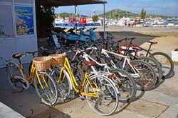 Noleggio bici Murter