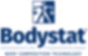 bodystatwix1.png