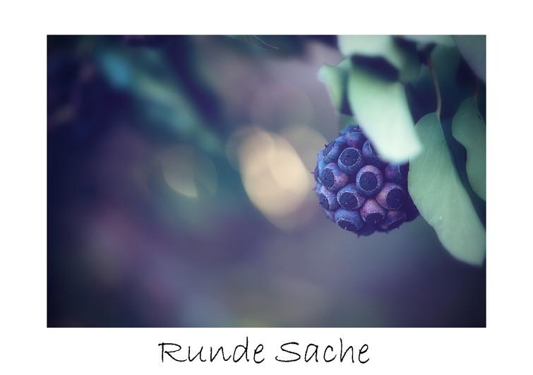 Runde Sache_max.jpg