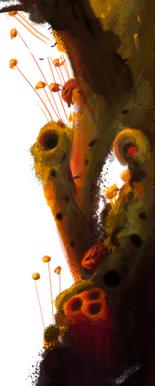 Pollen_Plant_2.png
