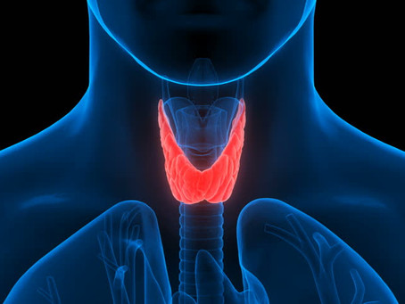 Nutrition for Hypothyroidism