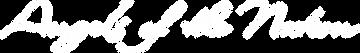 AOTN Logo (White).png