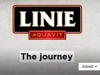 LINIE - THE JOURNEY IS BACK!