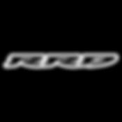 RRD roberto ricci logo