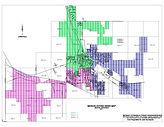 Voting ward map 11-19-2018.jpg