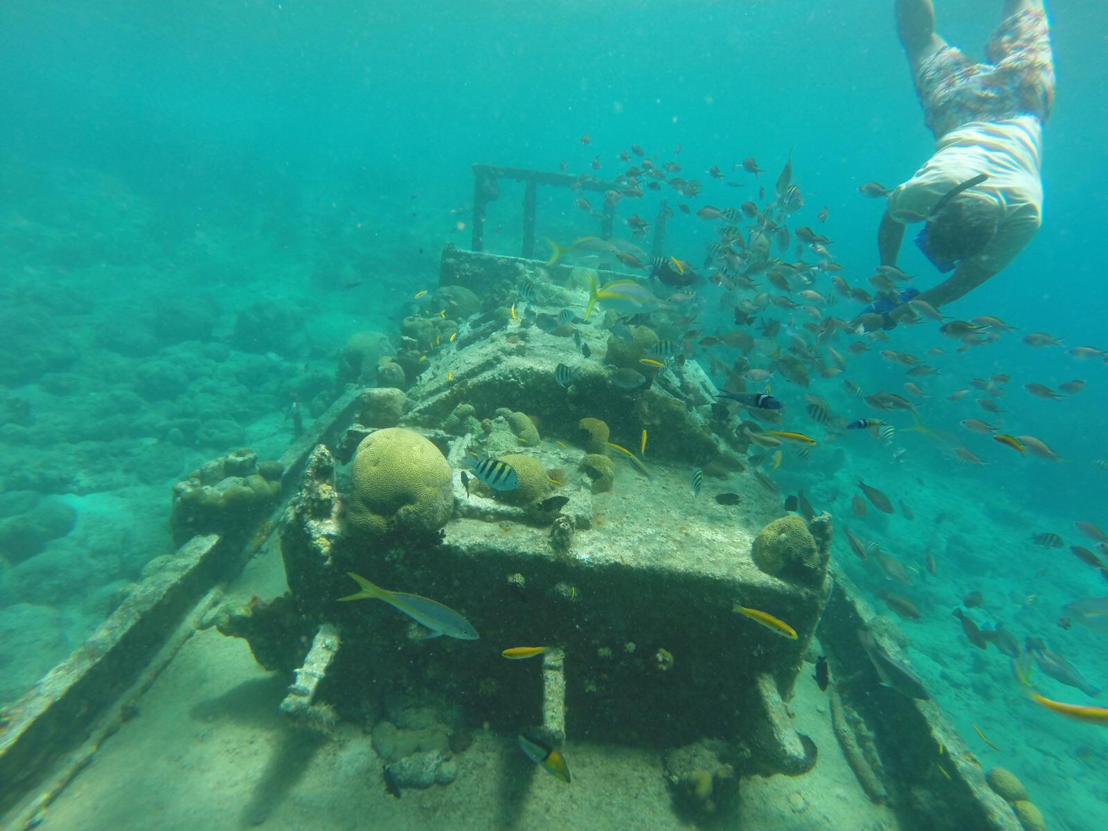 Snorkel trip Tug boat