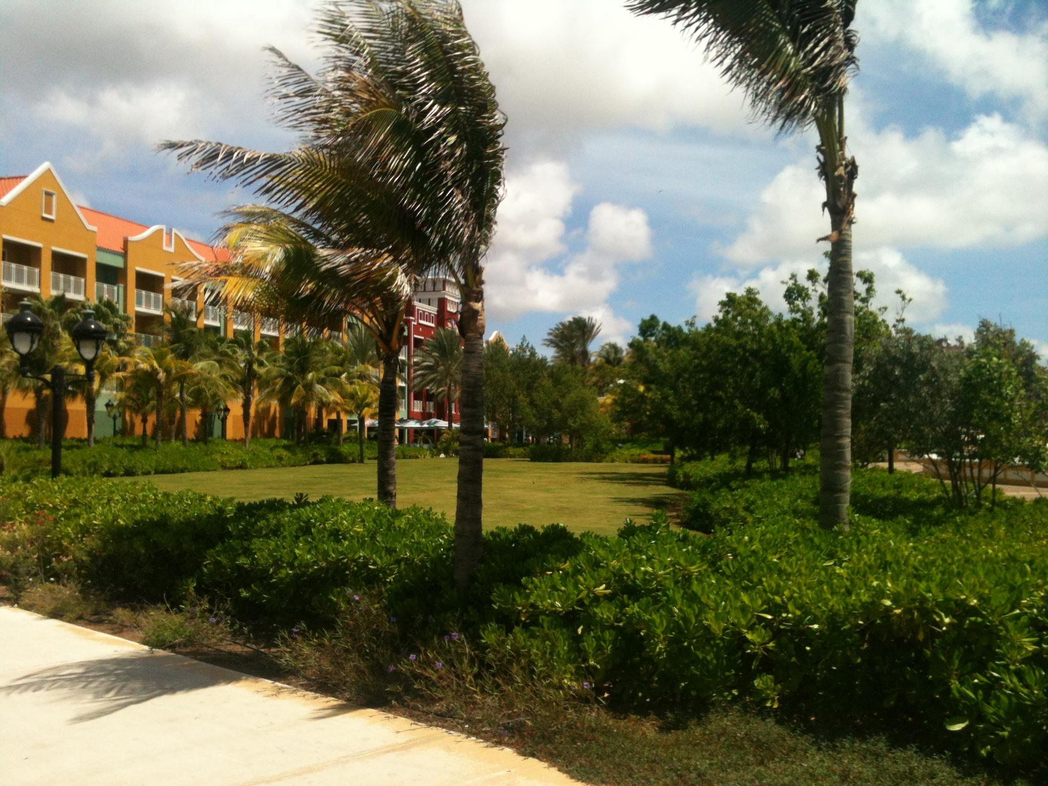 Renaissance hotel garden