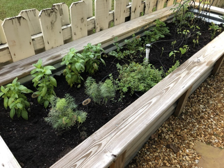 October 14, 2019 - Growing Gardens and Writing