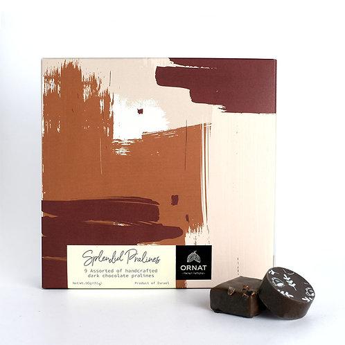 קופסה מרובעת בגווני חום עם מבחר פרלינים משוקולד מריר