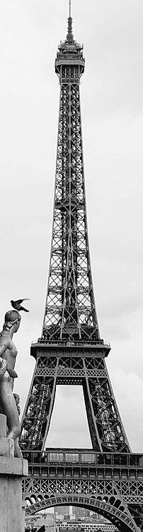 Trocadero, Paris, blank