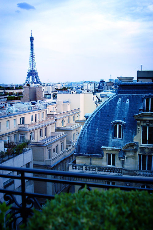 Eiffel rooftops, blank
