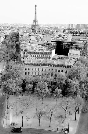 paris, france ,eiffel tower, view , paris rooftops