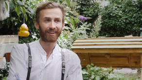 Meet the Bees & Refugees