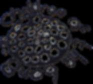 Original COTB Logo.png