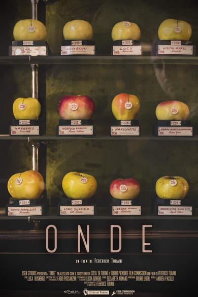 Onde (Short Film)