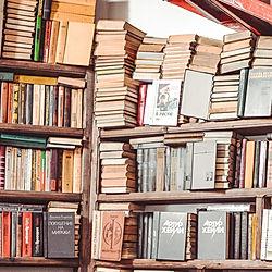 bookcase-books-business-1565245.jpg