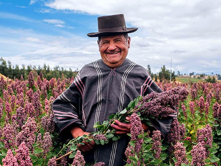 Your opportunity to provide sustainable futures for Bolivian farmers!