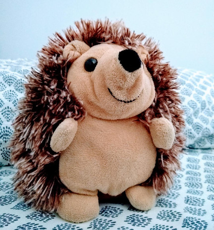 """""""portrait of hedgy"""""""