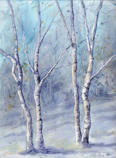 birch tree love