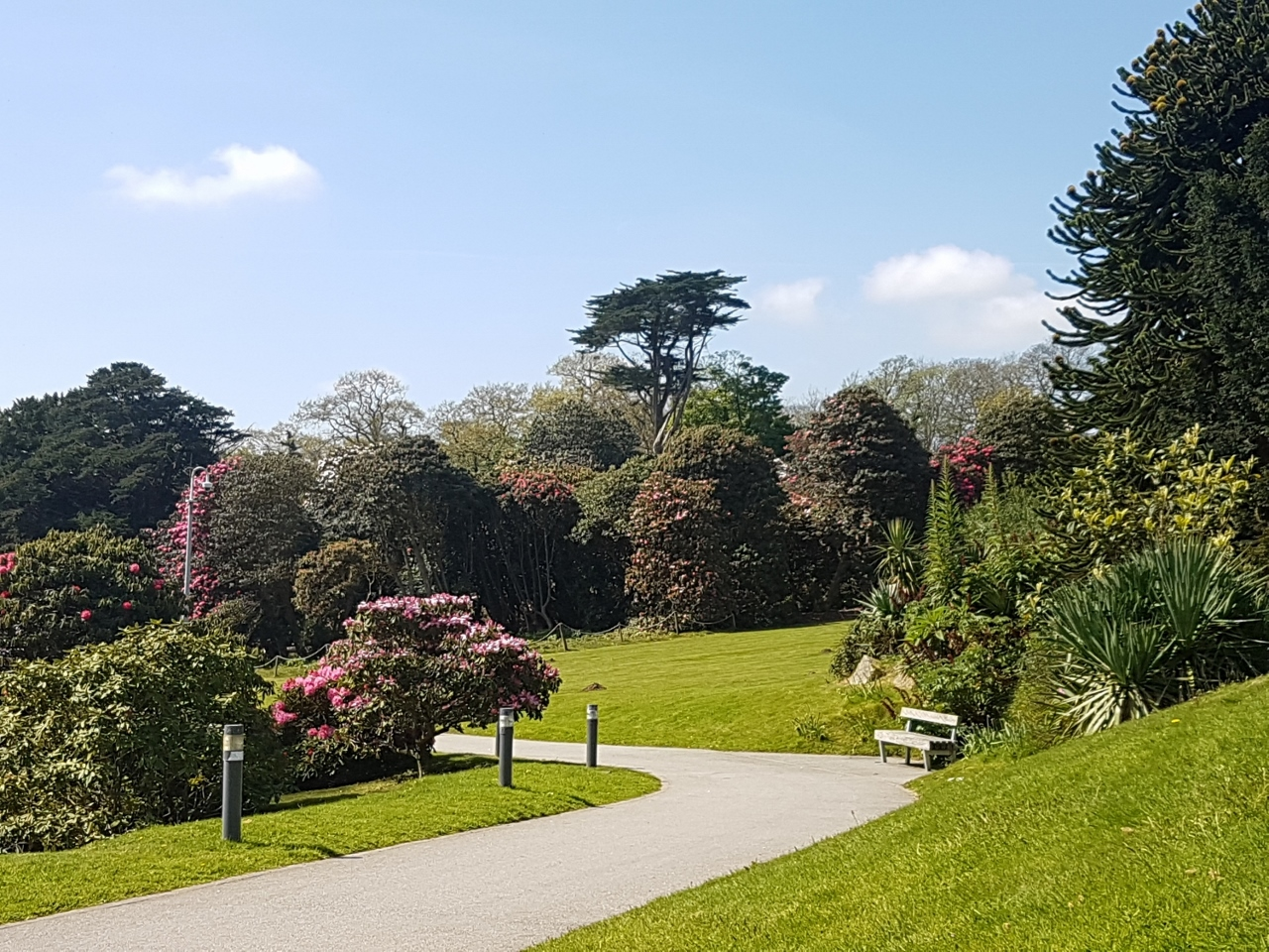 Campus Grounds in Falmouth