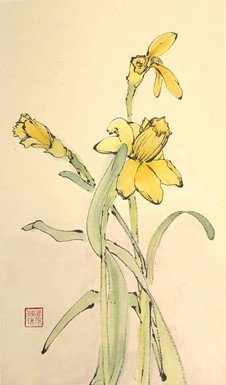 'Narcissus: symbol of spring'