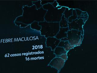 EM 18 MESES, PAÍS REGISTRA 250 CASOS DE FEBRE MACULOSA COM 81 MORTES