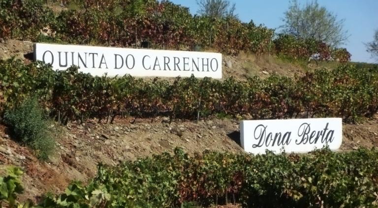 Da vinícola Dona Berta direto para o depósito da Chico Carreiro!