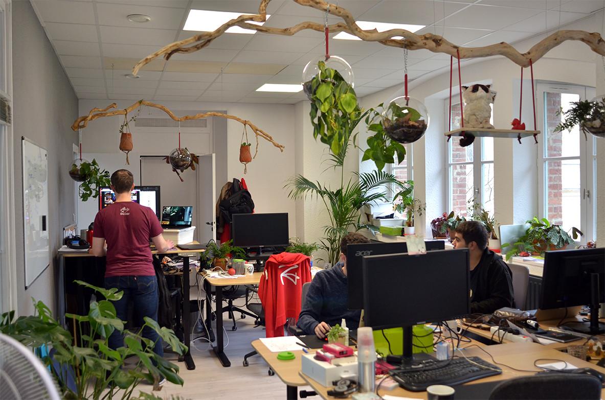 Plantes vertes bureau