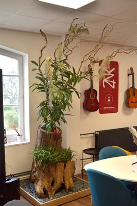 Végétalisation bureaux Rennes