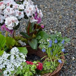 Anneau couronne de plantes fleuries