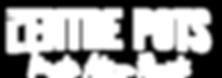 lentre pots fleuriste maitre artisan bretagne rennes geveze la meziere vignoc saint gregoire langouet langan melesse fleur bouquet plante terrarium fleurs séchées livraison