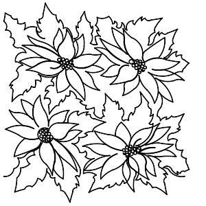 Poinsettia Panto_137