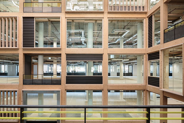 Timber Workspace CLY Glulam