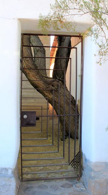 """""""Enclosed - Barrio Viejo"""""""