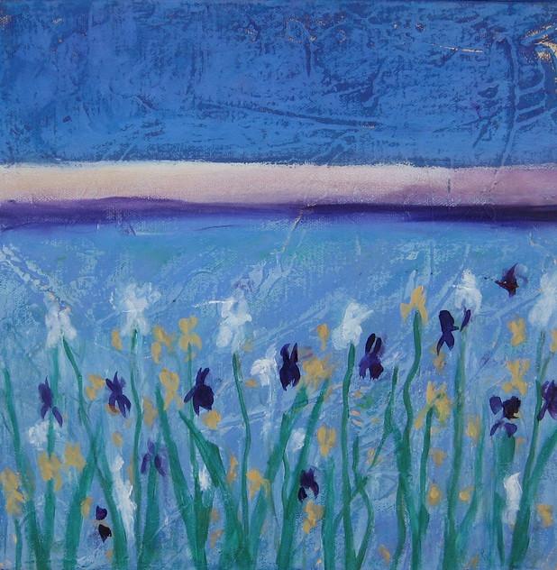 """Wild Iris in the Desert"""