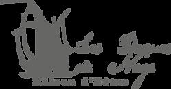 Logo Les dames de nage