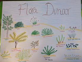 Flora Dunar.JPG