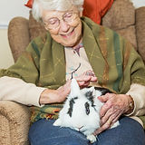 Care-Home-Animal-Therapy.jpg