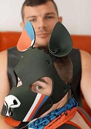 Hack Mr. Puppy Cz.jpg