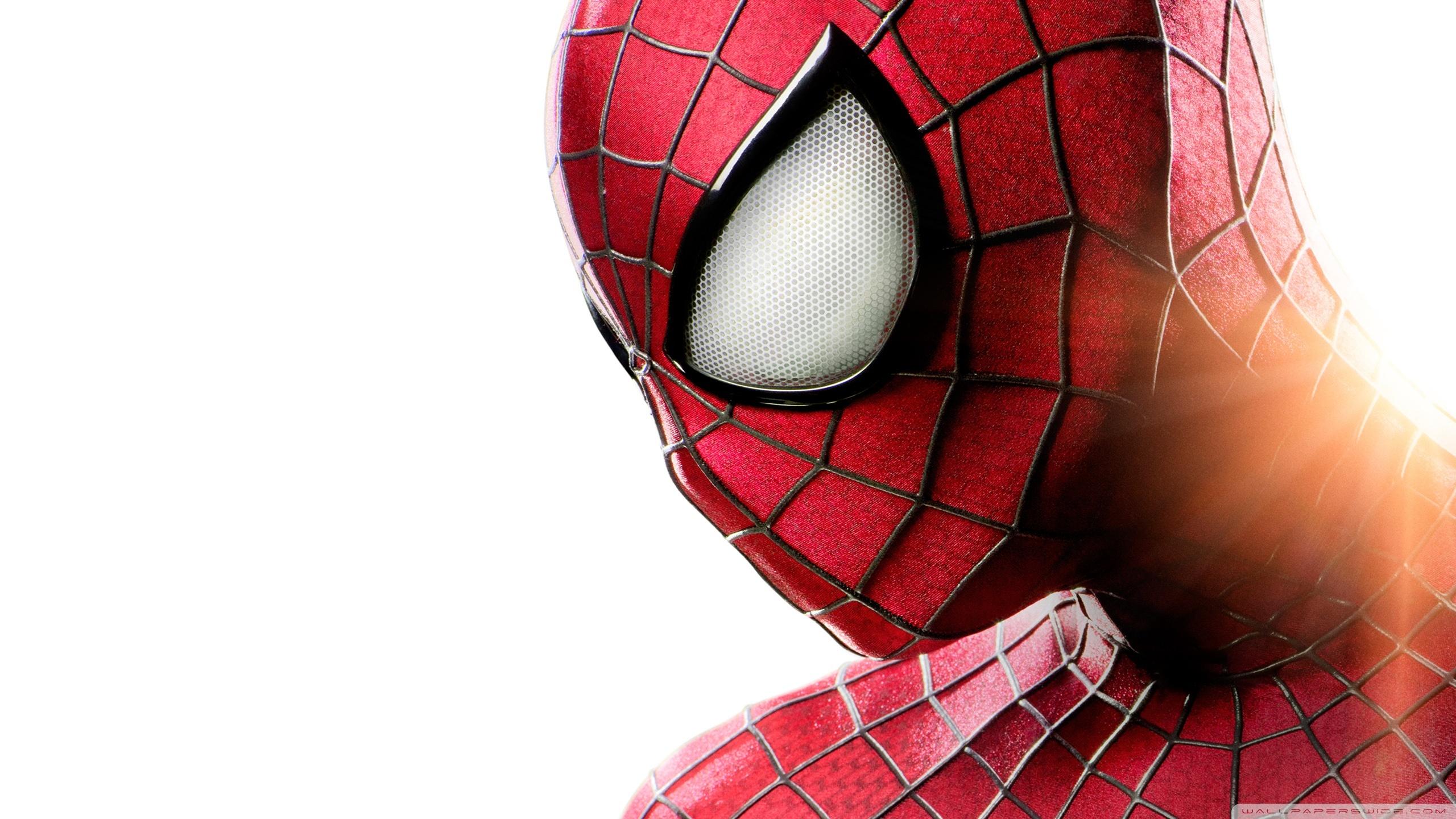 the_amazing_spider_man_9-wallpaper-2560x1440.jpg
